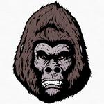 Gorilla Theory Meeting Organiser